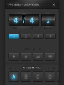 MetroTimer screenshot pro version preview 2